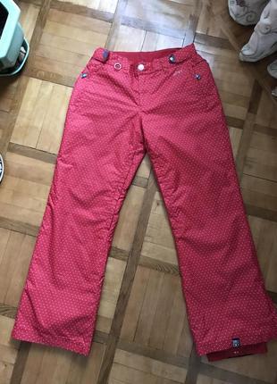 Лыжные штаны roxy