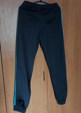 Спортивные штаны adidas2 фото