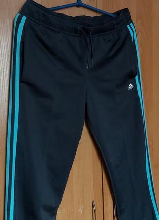 Спортивные штаны adidas3 фото