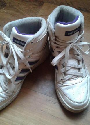 Adidas  высокие кроссовки