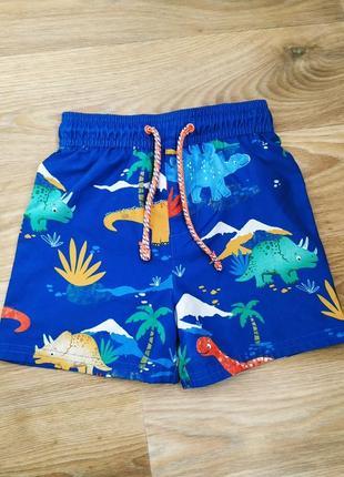Пляжные шорты 1.5-2