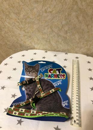 Ремешок для маленькой кошки