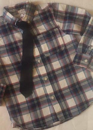 Рубашка с галстуком 👔 рубашка с длинным рукавом