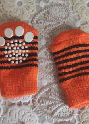 Носочки для собачки или котика