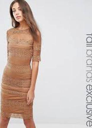Кружевное платье-футляр с рукавом 1/2 paper dolls tall