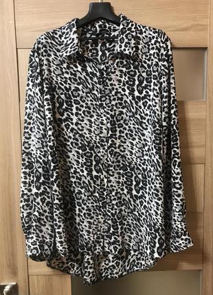 Большой выбор блуз рубашек / блуза в анималистический принт