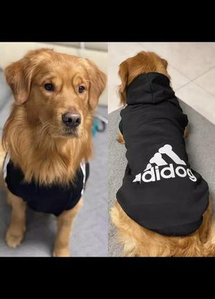 Новая толстовка для собак adidog( adidas)
