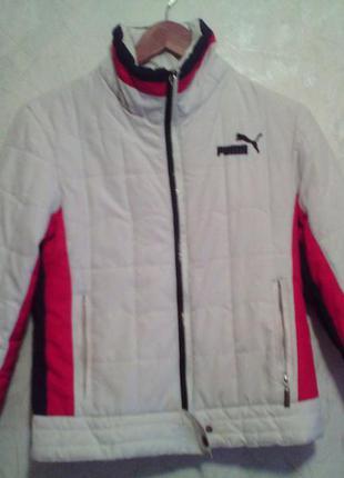Куртка спортивная осенняя
