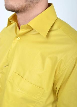 Яркая стильная рубашка цвета есть м