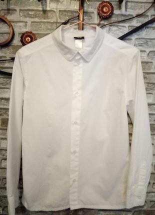 Белая новая рубашка на мальчика.р-158 h&m