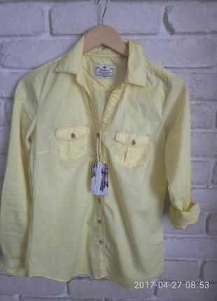 Нова рубашка colins