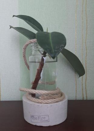 Оригінальна ваза з бетону і скла