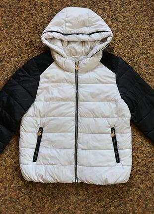 Куртка демисезонная colin's l