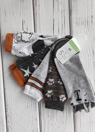 Красивые носки с собачками 23-36 размер