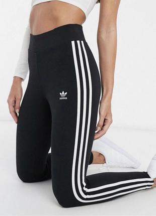 Лосины adidas2 фото