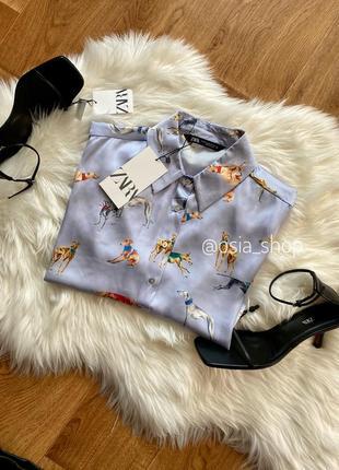 Сорочка блуза zara