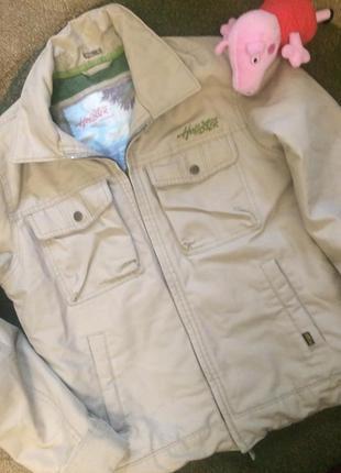 Куртка тужурка hollister