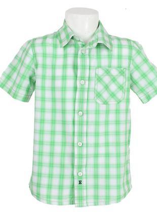 Зеленая рубашка в клетку с коротким рукавом
