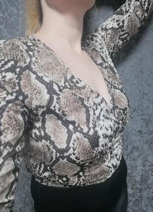 Блуза, боди