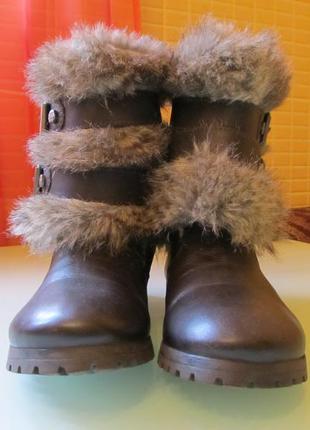 Модные женские ботинки miss sixty