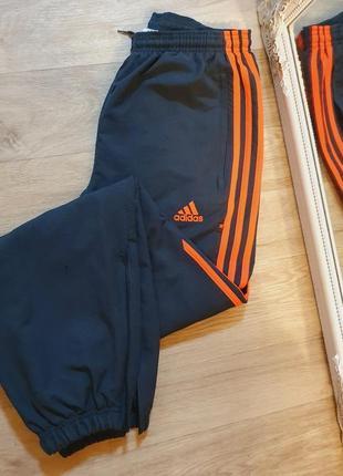 Штаны джогеры спортивные adidas высокая посадка