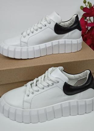 Кеди - кросівки