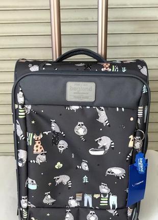 Чемодан, маленький чемодан, еноты, валіза, ручная кладь, самолетный чемодан