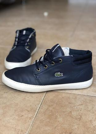 Зимние тёплые кожаные ботинки кроссовки кеды lacoste