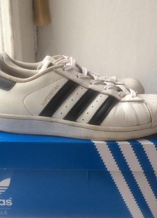 49648001 Кроссовки adidas superstar оригинал кожа белые с черными полосками ...