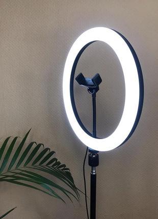 Кольцевая лампа с штативом 26см/220см