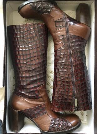 Кожаные сапоги fellini крокодил