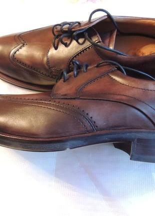 Мужские классические туфли ecco canberra кожа