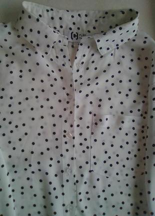 Рубашка блузка в мелкий горошек