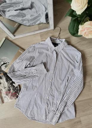 Белая рубашка в полоску бренда tommy hilfiger