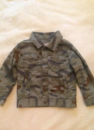 Котоновый пиджак carters