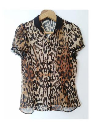 Леопардовая блузка, размер s-m