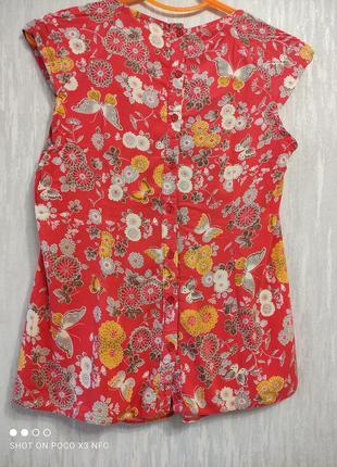 Блуза dorothy perkins2 фото