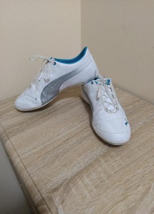Кроссовки. puma2 фото