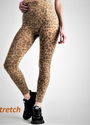 Лосины женские стрейчевые леопардовые, трикотажные, весенние, летние