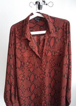 Блуза принт