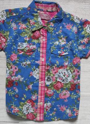 Яркая летняя рубашка mango