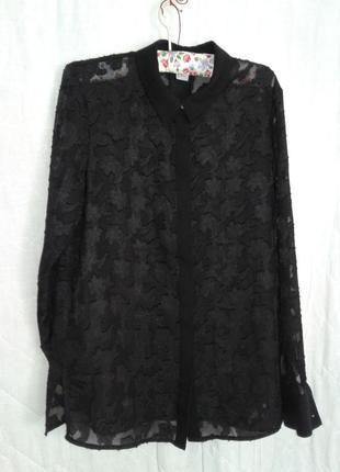 Шикарная шифоновая черная блузочка, xl-хxl