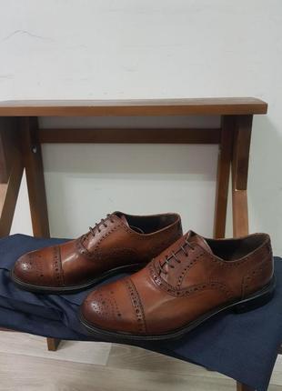 Мужские кожаные туфли оксфорды baldinini made in italy 42 оригинал bally