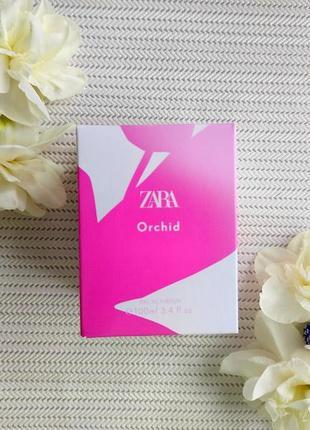 Zara orchid 💮