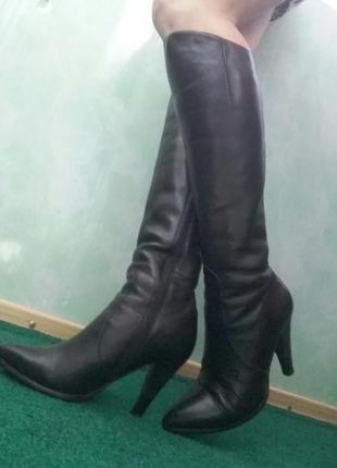 Классические кожаные зимние сапоги, ellenka + подарок