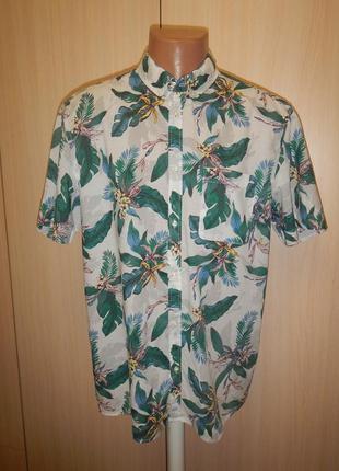 Тенниска рубашка в принт h&m p.l 100% хлопок