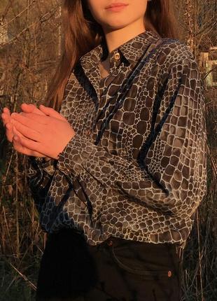 Винтажная рубашка блуза basler вінтаж вінтажна анімалістична4 фото