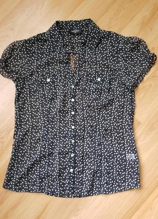 Блузка, блуза в горошек