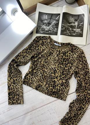 Укороченная леопардовая кофта, топ, свитшот zara2 фото