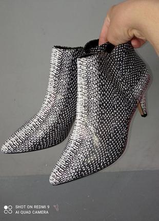 Туфлі туфли ботинки next